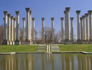 National Arboretum Museum in Washington DC