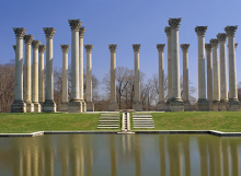 National Arboretum Museum in Washington DC